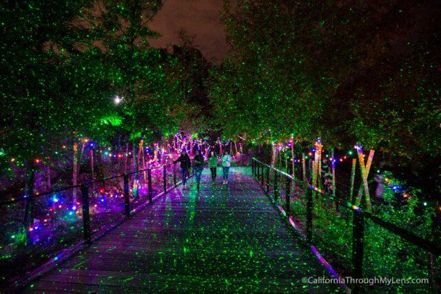 la-zoo-lights-21