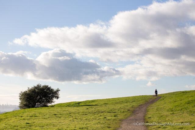 oakland-exploring-7