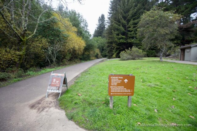 redwood-regional-park-stream-trail-1