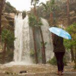 Dana Point Harbor Waterfall: One of SoCal's Most Spectacular Seasonal Waterfalls