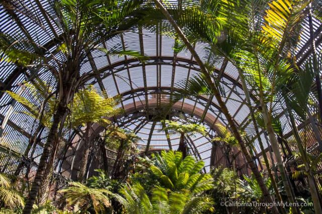 Gentil Let Me Know What You Think Of The Botanical Building In The Comments And  Check Out More Of My Favorite Spots In Balboa Park Here.