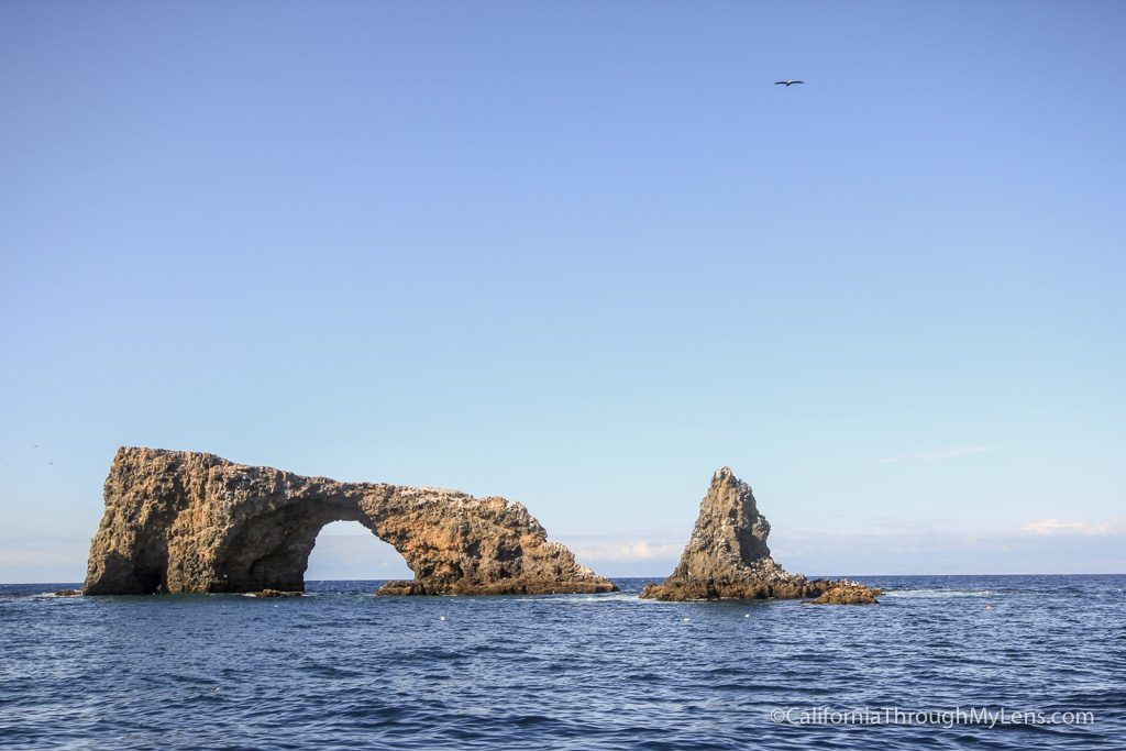 Channel Islands National Park Guide: Exploring California\'s Rugged ...