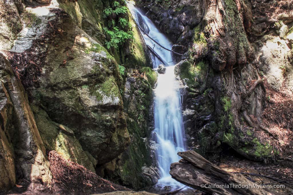 Ewoldsen Trail Hiking In The Redwoods Of Big Sur
