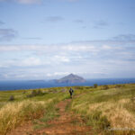 Channel Islands National Park Guide: Exploring California's Rugged Islands