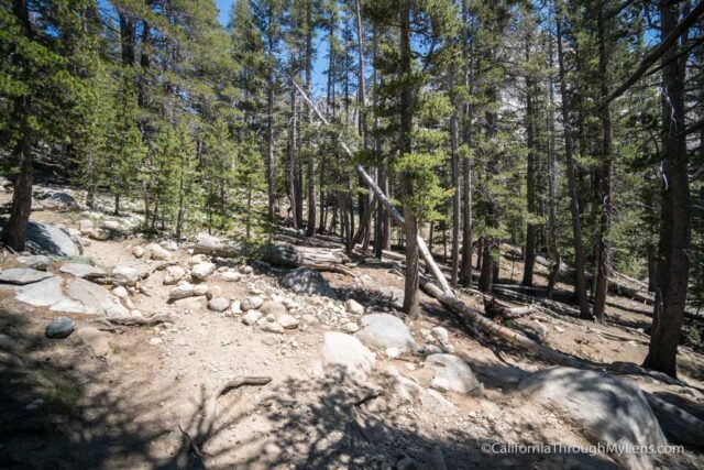 The Trail Starts A Gradual Incline That It Maintains For Most Of Hike This Is Not Strenuous People But Take Your Time As You Go Uphill