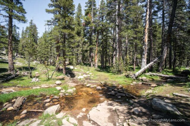 The Trail Wraps Around Lembert Dome And Follows A Creek As It Continues To Gain Elevation