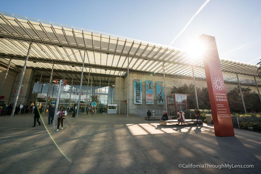 California Academy Of Sciences In San Francisco S Golden