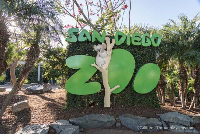 San Diego Zoo in Balboa Park - California Through My Lens