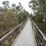 Spruce Street Suspension Bridge: Historic Footbridge in San Diego