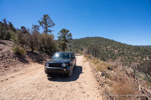 Big Bear's Gold Fever Off Road Trail